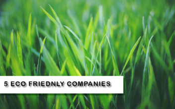 companies that help the environment