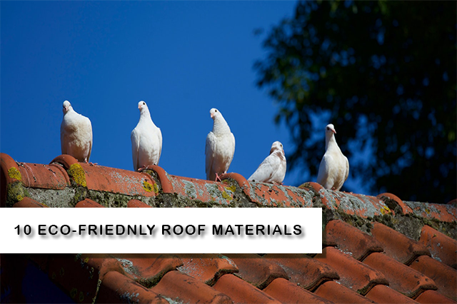 Eco-friendly roofs