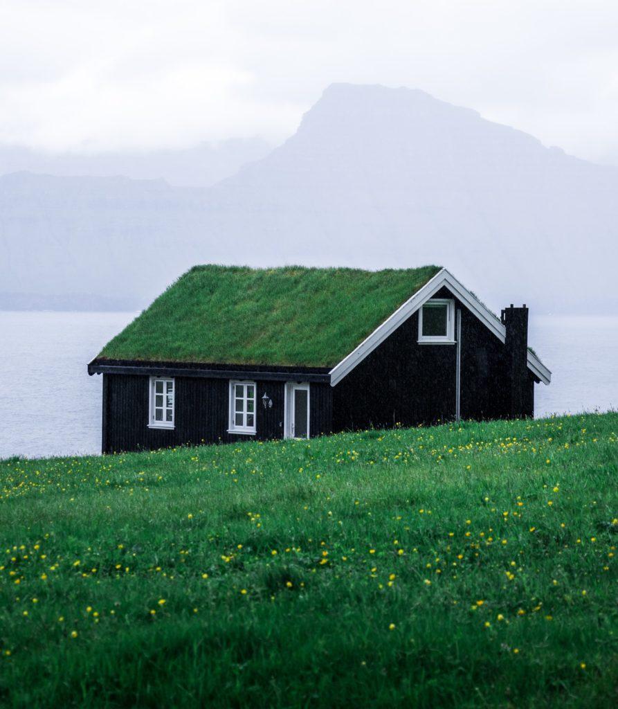 Live (grass) roof