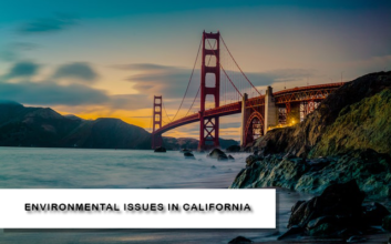 Environmental Issues in California