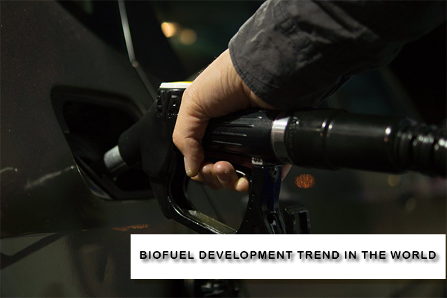 Biofuel What Countries Catch This Modern Trend