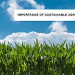 Importance of sustainable agriculture
